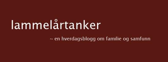 lammelårtanker en hverdagsblogg om familie og samfunn