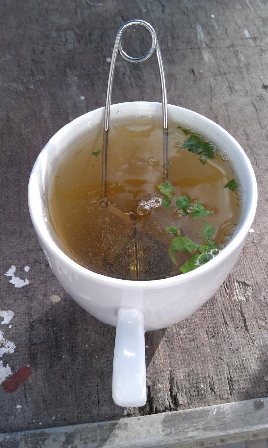 - hvit te med to dråper akasiehonning og mynteblader -
