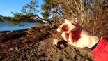 Olalompa med wienerpølse